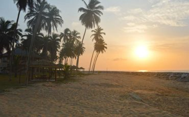 , A Joint Statement on Tourism and COVID-19 – UNWTO and WHO, BRAND ELMINA